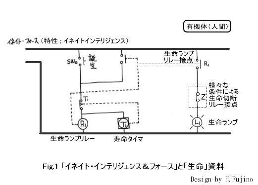 fs1.jpg